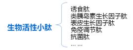 上海饲料添加剂供应商
