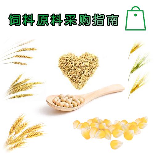 饲料原料:大豆玉米粒采购