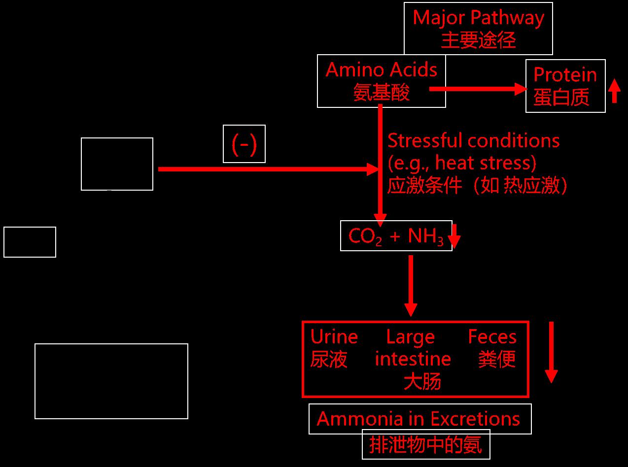 丝兰宝降低氨气作用机理图